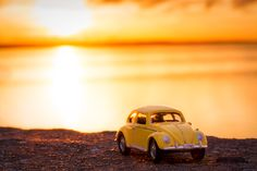 Sunset Bug by Gilmar Smith, via 500px