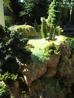 Foto - GoogleFotos Tabletop, Aquarium, Google, Plants, Pictures, Aquarius, Table, Fish Tank, Flora