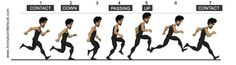 https://www.facebook.com/animationmethods  ★ || iAnimate || ★  Find more at https://www.facebook.com/iAnimate.net http://www.pinterest.com/ianimateschool/ #ianimate  iAnimate.net is quite simply the best animation program in the world. #animation #locomotion #biomechanics #runcycle #movement #movementanalysis #cycle