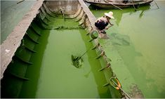 10 Million Tons of Chemical Fertilizer Discharged into China's Water Every Year - Modern Effects Of Water Pollution, Air Pollution, Pollution Pictures, Lake Pictures, Gallon Of Water, Fresh Water, China, Amazing, Instagram