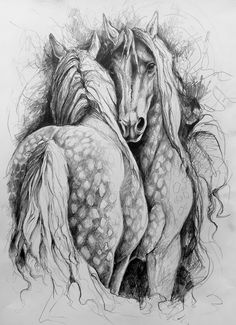 Draw Horses Drawing of an two dappled horses by WatercoloursForSale on Etsy - An original drawing on paper cms of two dappled horses by Gill Bustamante, (see SussexPaintings) shop for oils and this one for watercolours) Sold ready to frame. Drawing Cartoon Characters, Cartoon Drawings, Art Drawings, Drawing Art, Drawing Ideas, Drawings Of Horses, Animal Drawings, Drawing Techniques Pencil, Horse Sketch