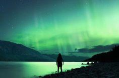 Awestruck Silhouettes Gazing at Spectacular Night Skies. (Photographer Elizabeth Gadd.)