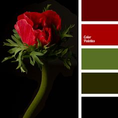 Color Palette #2799 (Color Palette Ideas)