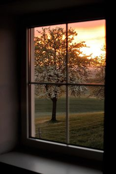 This is a peaceful window view of a sunrise or possible sunset. Just beautiful.