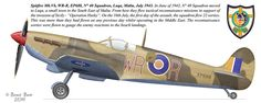 Ww2 Aircraft, Fighter Aircraft, Military Aircraft, South African Air Force, The Spitfires, Supermarine Spitfire, Ww2 Planes, Battle Of Britain, Aircraft Design
