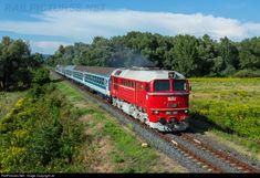 628 001 Hungarian State Railways (MÁV) M62 at Badacsonytördemic-Szigliget, Hungary by Joó Ádám Railroad Pictures, Train Art, Electric Locomotive, Commercial Vehicle, Hungary, Bridges, Diesel, Engineering, Vehicles
