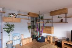 ALTS design built this cat friendly space saving apartment in Japan. The Nionohama apartment is re-modelers by ALTS Design Office. Cat Apartment, Apartment Furniture, Cat Furniture, Cat Walkway, Pan Comido, Cat Stairs, Japanese Apartment, Cat Shelves, Cat Playground