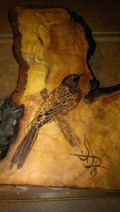 """Starling on Cherry"" woodburning, wood burning, pyrography"