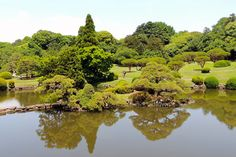 Tóquio zen Shijuku-Gyoen-jardim-japones3-toquio-relato