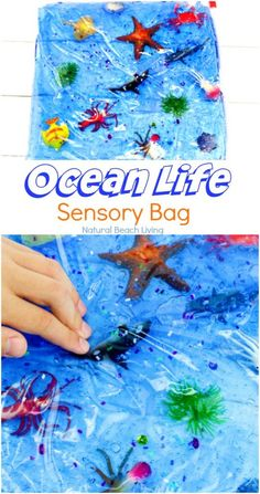 Easy Ocean Life Sensory Bag for toddlers and preschoolers, Mess-Free ocean themed sensory activities, Fun Hands On Activities for an Ocean Theme, ocean sensory bag is perfect for Ocean Science Table Ideas, Under the Sea Activities Fish Activities, Sensory Activities Toddlers, Baby Sensory, Infant Activities, Toddler Preschool, Toddler Crafts, Hands On Activities, Sensory Activities For Preschoolers, Sensory Bags