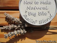 How To Make Natural Bug Bite Relief Blend.. on WoolyMossRoots Blog