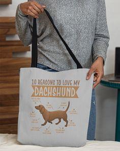 10 Reasons To Love Dachshund Best Dog - Ash miniature dachshund, dachshund party, english cream dachshund #dogtoys #dogsofinstagram #doggy, dried orange slices, yule decorations, scandinavian christmas Dachshund Tattoo, Dachshund Quotes, Long Haired Dachshund, Mini Dachshund, Funny Dachshund Pictures, English Cream Dachshund, Funny Costumes, Yule Decorations, Orange Slices