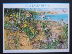 Nature of America - Great Lakes Dunes - Cat # 4352 Ten 42 Cent Stamps  MNH