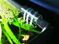 tube-holder-aquarium-doser