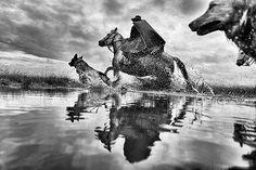 Fotógrafo capta imagens incríveis da rotina do pampa no sul do Brasil | Conexão Lusófona