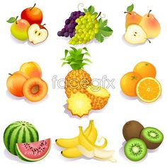 Fresh fruit vector _ life vector