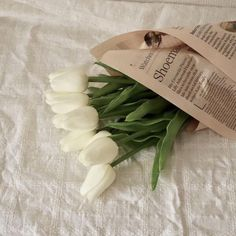 Shared by lilu. Find images and videos about white, aesthetic and flowers on We Heart It - the app to get lost in what you love. Cream Aesthetic, Classy Aesthetic, Flower Aesthetic, Aesthetic Photo, Aesthetic Pictures, Aesthetic Green, Aesthetic Collage, Summer Aesthetic, Aesthetic Fashion