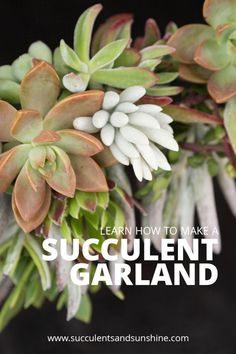 Decorate for your home with a beautiful succuletn garland!