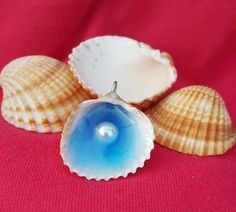 Items similar to Seashell with pearl pendant on Etsy World Crafts, Pearl Pendant, Pearl Beads, Sea Shells, Unique Jewelry, Pendants, Handmade Gifts, Drop Earrings, Pearls