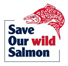 831845fac8b9 161 Best Salmon Recovery images