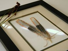 homework: today's assignment - be inspired {creative inspiration for home and life}: Etceteras: painted feathers