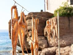 Perfect for: foodiesOff the coast of Turkey, Lesbos in recent months has been best known as a landing point for Syrian refugees. Yet among Greeks, Lesbos is considered one of the best places to eat in the country: Come for the seaside tavernas and mountain eateries