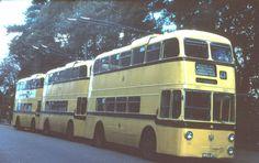 WRU 270 Bournemouth bus photograph | eBay