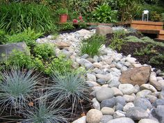 Xeriscaping?: real river rocks --  yard ideas_Google Image Result for http://st.houzz.com/simgs/417180510f1ce70c_15-5975/asian-landscape.jpg