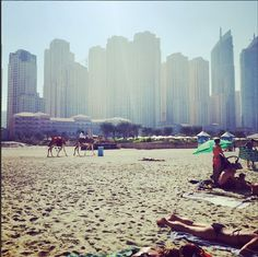 #Dubai - Miami with Camels! #adventures #gennglobal #genn #global.  Check out our website at http://www.gennglobal.com/ !