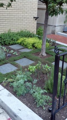 1000 Images About Designing My Townhouse S Yard On