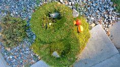 2 Mooskränze in der Größe 24 cm in Möbel & Wohnen, Dekoration, Sonstige | eBay!