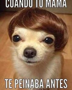 Alguno todavía se peina así, jajaja #memes #chistes #chistesmalos…