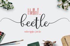 beetle (fontduo) ~ Script Fonts on Creative Market