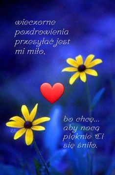 Good Night, Humor, Motto, Funny, Polish, People, Nighty Night, Humour, Funny Photos