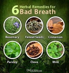 Many people in society suffer with halitosis or bad breath. This article goes into the causes and natural strategies to improve your breath. Chronic Bad Breath, Causes Of Bad Breath, Natural Treatments, Natural Cures, Natural Health, Keto Breath, Bad Breath Remedy, Dental Health, Oral Health