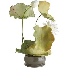 Pier 1 Imports Green Faux Lotus & Lily Pad Arrangement (225 CAD) ❤ liked on Polyvore featuring home, home decor, floral decor, green, egyptian home decor, pier 1 imports, artificial floral arrangement, greek home decor and aztec home decor