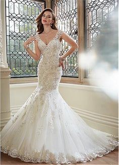 Fabulous Tulle V-neck Neckline Mermaid Wedding Dresses with Beaded Lace Appliques