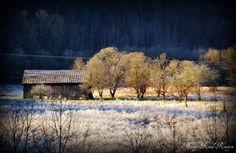 """Frosty Sunday morning"" in Hatfield Kentucky (Pike Co.)"