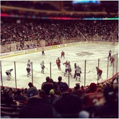 Minnesota Wild hockey vs. St. Louis Blues. November 2011. -nm