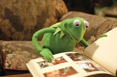 Kom je straks bij het voorlezen? Tussen 14.00 en 15.00 uur in Duiven, Westervoort en Zevenaar. Kermit zit er al klaar voor!