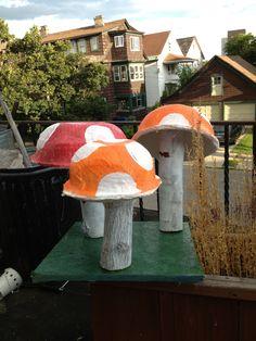 Mushrooms willy wonka party!