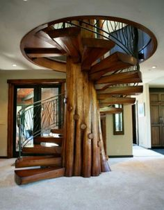 Tree staircase is amazing!