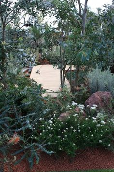 10 Prompt Simple Ideas: Luxury Backyard Garden Dream Homes mini backyard garden chicken coops.Backyard Garden Fence Solar Lights backyard garden trees how to grow.Backyard Garden Shed Fire Pits. Australian Garden Design, Australian Native Garden, Australian Plants, Australian Bush, Bush Garden, Dry Garden, Design Patio, Backyard Garden Design, Tropical Backyard