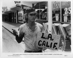 <a href='/name/nm0000434/?ref_=m_nmmi_mi_nm'>Mark Hamill</a> in <a href='/title/tt0077372/?ref_=m_nmmi_mi_nm'>Corvette Summer</a> (1978)