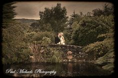 Tom and Nikki at the Kaitoke gardens bridge. Wellington wedding venue. Paul Michaels photography http://www.paulmichaels.co.nz/