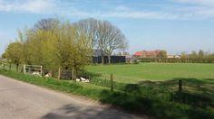 Boeren vrezen grote gevolgen als er niet wordt ingegrepen tegen de verzilting van het zoetwatersysteem in Noord- en Zuid-Holland. LTO heeft een brandbrief gestuurd.