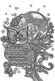 Download Owl Coloring Pages
