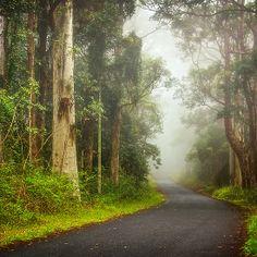 Rural Roads...