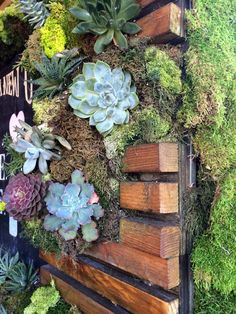 Loving this #verticalgarden spotted in Santa Monica! #gardens #succulents #botanical #livingwalls #greenwalls