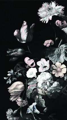 Wallpaper Backgrounds Dark - Dark Floral Mural // Still Life Flowers - Rachel Ruysch Black Background Painting, Flowers Black Background, Flower Background Wallpaper, Black And White Flowers, Dark Flowers, Background Vintage, Black White, Floral Flowers, Paper Flowers